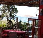 Csodás kilátás egy fantasztikus étteremből Palmizanan!